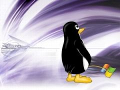tux_wallpaper_by_kdaver_s
