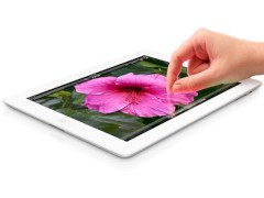 Apple iPad dominiert