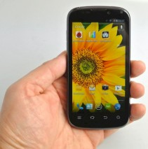 ZTE Grand X In im Test