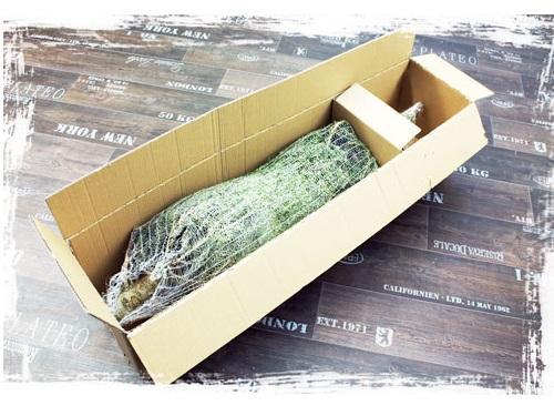 weihnachtsbaum online kaufen hamburg europ ische weihnachtstraditionen. Black Bedroom Furniture Sets. Home Design Ideas