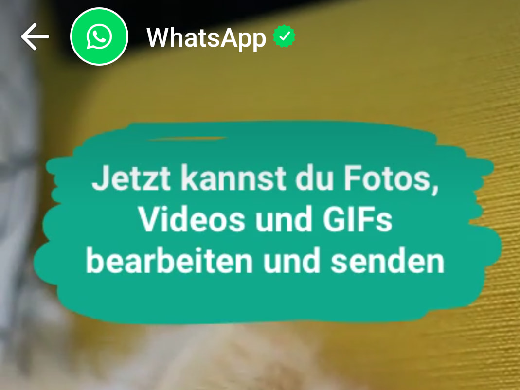whatsapp status jetzt verf gbar ausprobiert am iphone 7 plus news. Black Bedroom Furniture Sets. Home Design Ideas