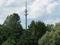 Wird Nicht-Ausbau belohnt? Wer ausbaut, soll nach Willen der Politik die Nichtausbauer ins Netz lassen müssen. Zu sehen ist ein Mast in Kyritz in Brandenburg.