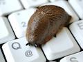 Internet im Schneckentempo ist zum Glück die Ausnahme, aber oft nicht so schnell, wie in der Werbung versprochen.