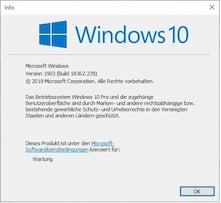 Mit dem Juli-Patch-Update steigt die Windows-Version 1903 auf Build 18362.239.