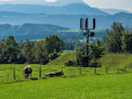 """Wie können die Mobilfunkanbieter """"motiviert"""" werden, auch in dünn besiedelten Regionen Sender aufzubauen? Per gesetzlichem Zwang?"""