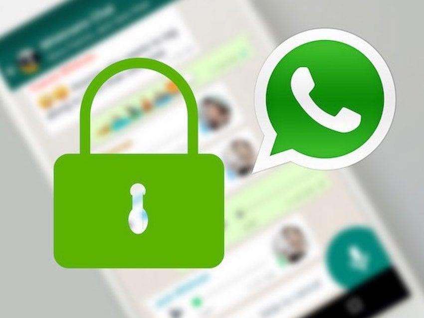 Whatsapp Newsletter übersicht