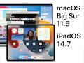 Apple liefert regelmäßig Sofware-Updates, die Fehler beseitigen und neue Funktionen bringen.